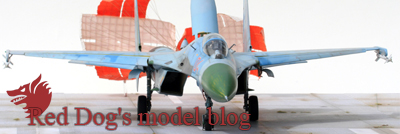 RD_modelblog.jpg